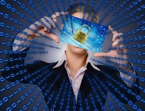 Skydda ditt data